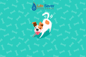 pet pool safety fence installers North New Jersey