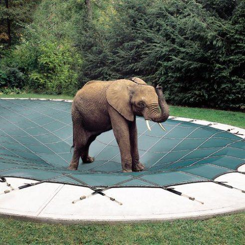 Loop Loc pool cover New Jersey